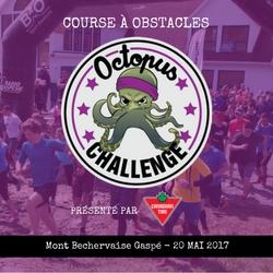 Octopus Challenge Course à obstacles Gaspésie